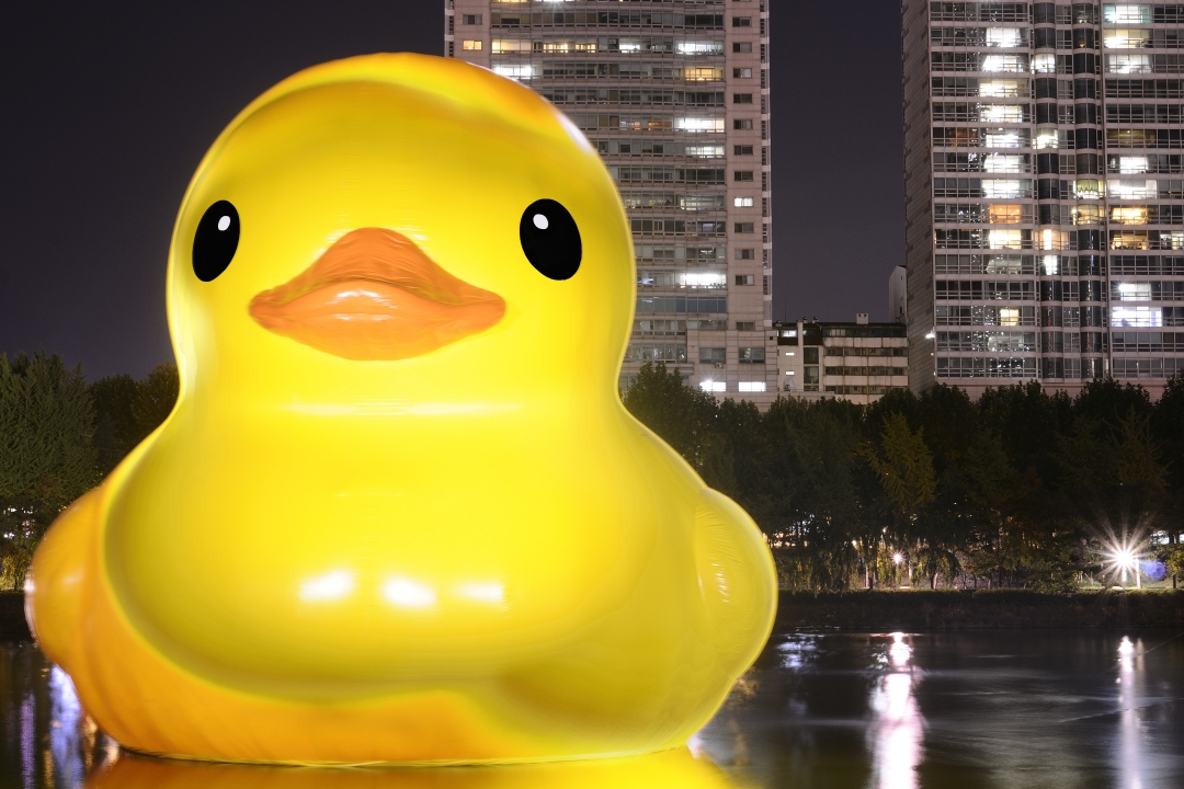 Seoul Photos: Giant Rubber Duck inSeoul