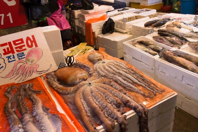 Noryangjin Giant Octopus