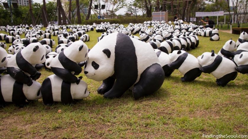Panda 1600 Exhibit-10