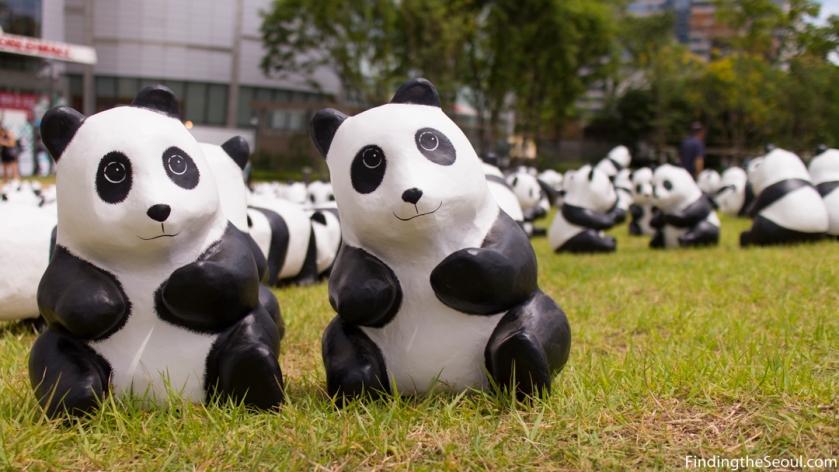 Panda 1600 Exhibit-13