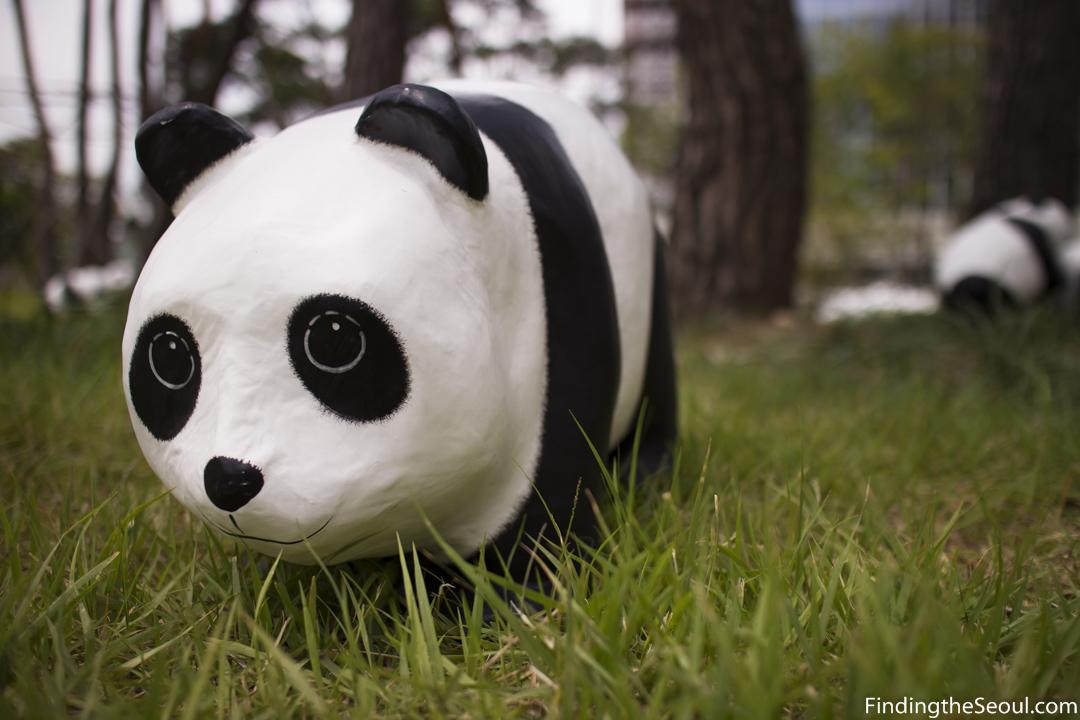 1600 Pandas: An EpicPandamic