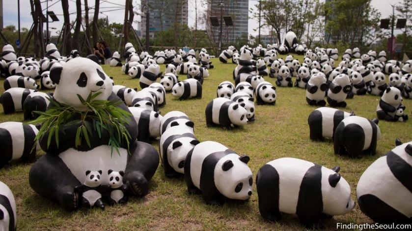 Panda 1600 Exhibit-16