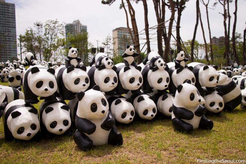 Panda 1600 Exhibit-17