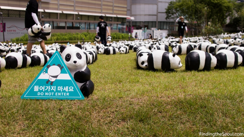 Panda 1600 Exhibit-5