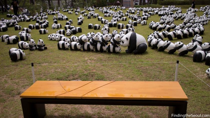 Panda 1600 Exhibit-9