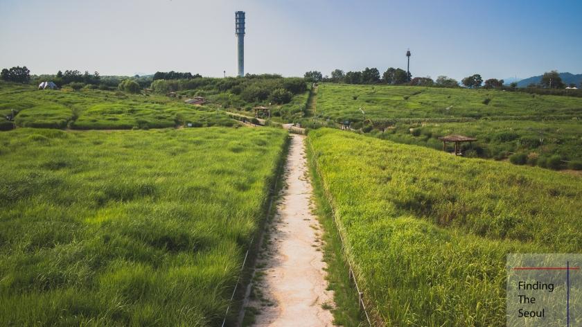 haneul-park-sky-2_mg_9166