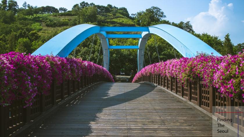 haneul-park-world-cup-pedestrian-bridge-2_mg_9147